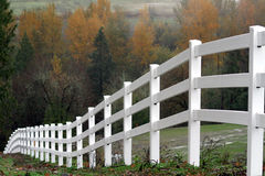 Vitt staket During Autumn Royaltyfri Bild