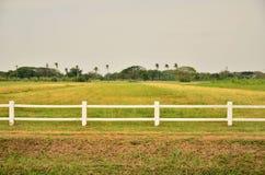 Vitt staket i lantgårdfält arkivbilder