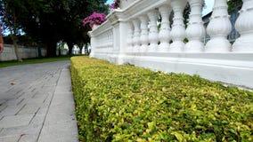 Vitt staket med gräsplaner royaltyfria foton