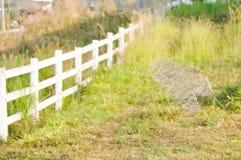 Vitt staket och fält arkivbild