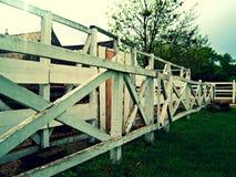 Vitt staket på en lantgård för hästar Royaltyfri Fotografi
