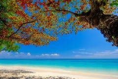 Vitt strand- och blåtthav på den Rok ön Thailand Arkivfoton