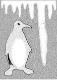 vitt - svart pingvin Arkivbild