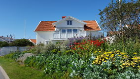 Vitt svenskhus Royaltyfria Foton