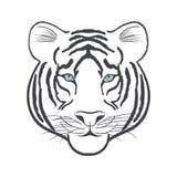 Vitt tigerhuvud - vektoriIllustration stock illustrationer