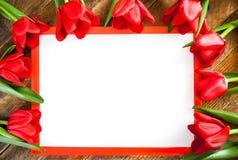 Vitt tomt ark i röd ram med kopieringsutrymme och röda tulpan ar Arkivfoto