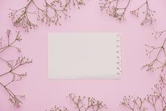 Vitt tomt kort med pastellblommor och band på rosa blek bakgrund, blom- ram Idérik hälsning, inbjudan och ferie c royaltyfri foto