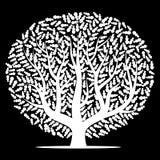 Vitt träd med sidor på svart bakgrund Arkivbild