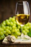Vitt vin i ett exponeringsglas med vinrankan Arkivfoton