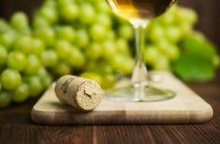 Vitt vin i ett exponeringsglas med vinrankan Royaltyfri Fotografi