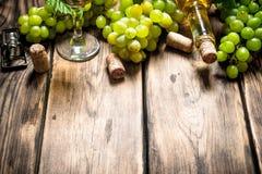 Vitt vin med filialdruvor Arkivfoton