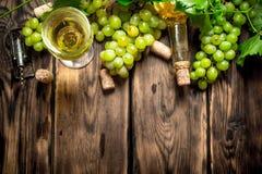 Vitt vin med filialdruvor Royaltyfria Foton