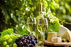 Vitt vin med vinglaset och druvor på trädgårds- terrass Royaltyfri Bild