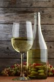Vitt vin och druvor Arkivbilder