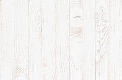 Vitträ texturerar bakgrund royaltyfri foto
