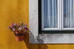 Viuda con los floreros Fotos de archivo libres de regalías