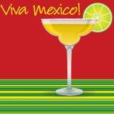 Viva Μεξικό! Μαργαρίτα Στοκ Φωτογραφίες