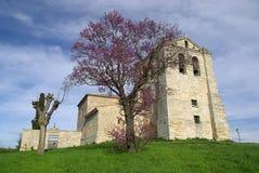 Vivar del Cid kyrka Royaltyfri Fotografi