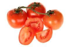 vive被种植的沙拉的蕃茄 免版税库存照片