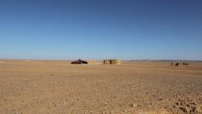 Vivendo nel deserto 1