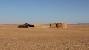 Vivendo nel deserto 2