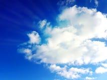 Vivent le ciel sain de fond d'été d'herbe de ciel bleu Photographie stock libre de droits