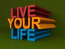 Vivent votre vie illustration stock