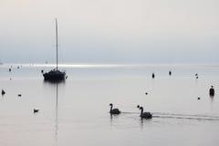 Viverone lake in winter Stock Photo