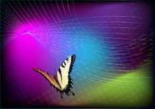 Vivid background butterfly. Vivid background with flying butterfly template Stock Photos