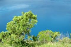 Vivid blue lake in Mount Garbier in Australia Stock Photography
