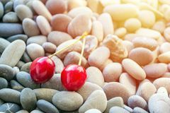 Vivid bright summer time concept with two Fresh organic red cherries on background of gray round smooth sea pebbles royalty free stock photography
