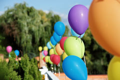 Vivid color balloons on green outdoor background. Line of vivid color balloons on green outdoor background Stock Images