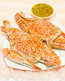 Vivid color on the crab Royalty Free Stock Photo
