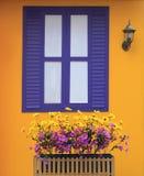 Vivid color wall Stock Image