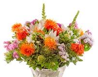 Vivid colored wild flowers Royalty Free Stock Photos