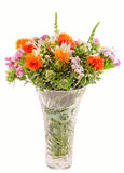 Vivid colored wild flowers Stock Photography