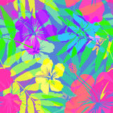 Vivid colors bright tropical flowers vector Stock Images