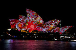 Vivid Colors on Opera House Royalty Free Stock Image