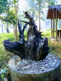 Vivid 3d art wood scluptures. Its a sclupture made from the remaining part after chopping the tree black colour Royalty Free Stock Images