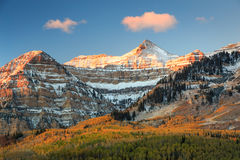Vivid dawn fall glow in the Wasatch Mountains. Stock Photos