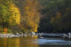 Vivid fall foliage reflects on the Farmington River, Canton, Con. Colorful trees laden with golden fall foliage reflect in the waters of the Farmington River in Stock Images