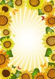 Vivid floral summer frame Stock Image