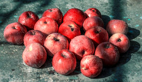 Vivid freshly picked red apples with contrasting shadows on the old table Royalty Free Stock Images