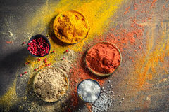 Vivid herbs and spices on old board Royalty Free Stock Images