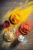 Vivid herbs and spices on old table Stock Images