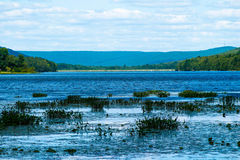Vivid Lake. Lake in Pennsylvania with dam in foreground Stock Images