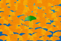 Vivid leaves Stock Image