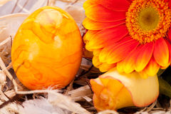 Vivid orange Easter egg with a gerbera and rose Stock Photo