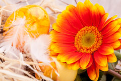 Vivid orange Easter egg with a gerbera and rose Stock Photography