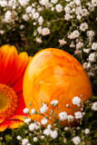 Vivid orange Easter egg with a gerbera and rose Royalty Free Stock Photography